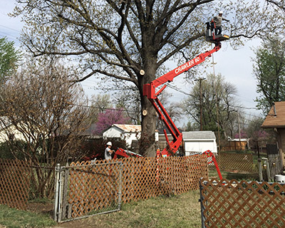 crawler-60-tree-removal-tulsa-0k-01