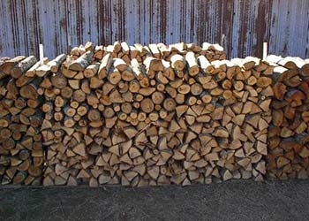 firewood-article